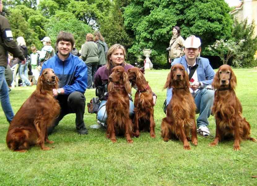 zleva: Andy, Barcy, Alison, Beauty, Aischa
